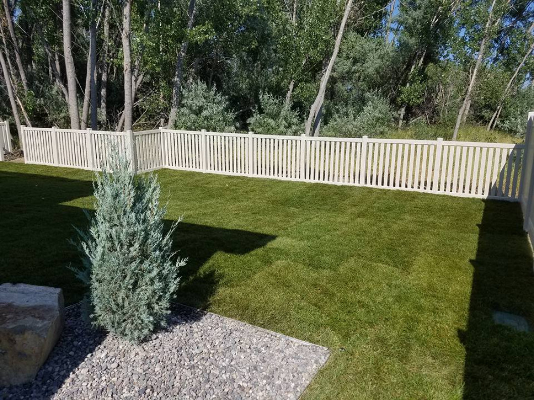 Tree and Sod Installation in Billings, MT